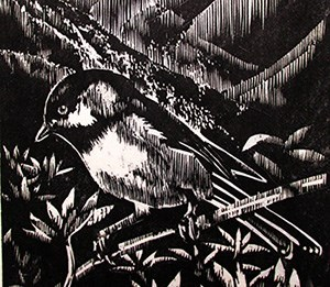 a black and white woodcut print of a bird