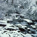 A snowy river scene in the park.