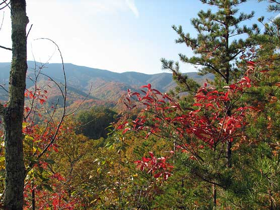 The view from Bote Mountain Trail on Oct 18.