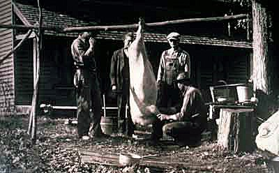 Historical photo of a mountain family butchering a hog.
