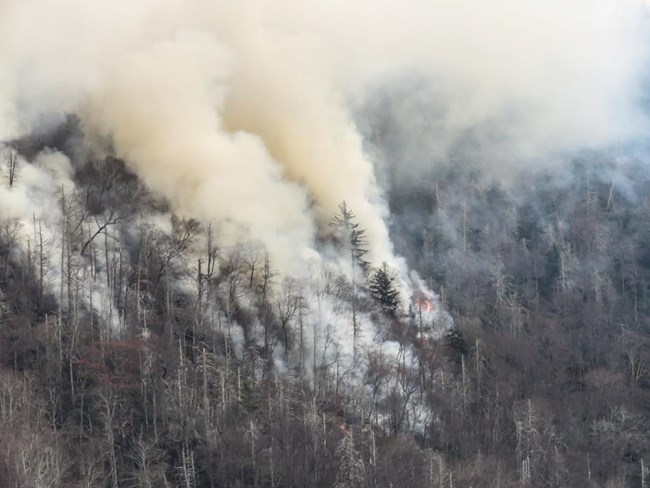 Chimney Tops 2 Fire