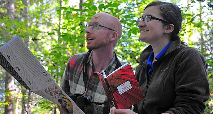 A man and woman using a guidebook to identify birds in the forest.