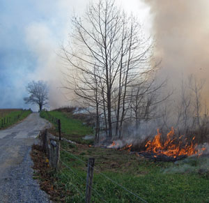 Prescribed fire in Cades Cove.