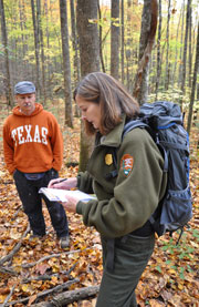Volunteers help scout replanting locations for ginseng.