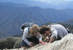 Dr Tripp and Dr Lendemer examining lichens on Mt LeConte, GRSM