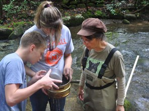 Dr Andrea Radwell and students carefully pour water samples to collect water mites.