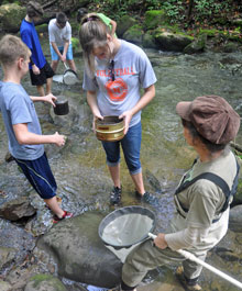 Student volunteers help Dr. Andrea Radwell collect water mites in the park.