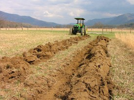 Plowing rows for native grass seed planting, Cades Cove
