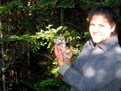 Park Flight intern with Saw whet owl.