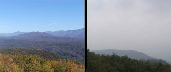 A composite of two photos showing good visibility within the park (left) and one showing poor visibility within the park (right).