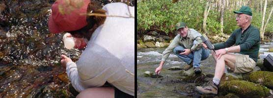 A composite of two photos with park volunteers taking water quality data.