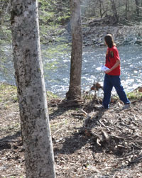 A student citizen scientist scans a riverbank for ash trees.