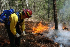 A firefighter manages a fire in the park.