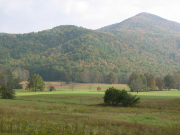 The characteristic open fields of Cades Cove.