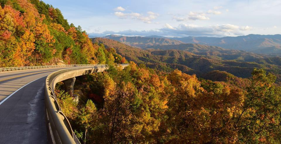 Bridges of the new section of the Foothills Parkway during early Fall