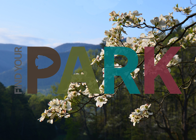 A scenic view of Great Smoky Mountains National Park with the Find Your Park Logo superimposed over top.