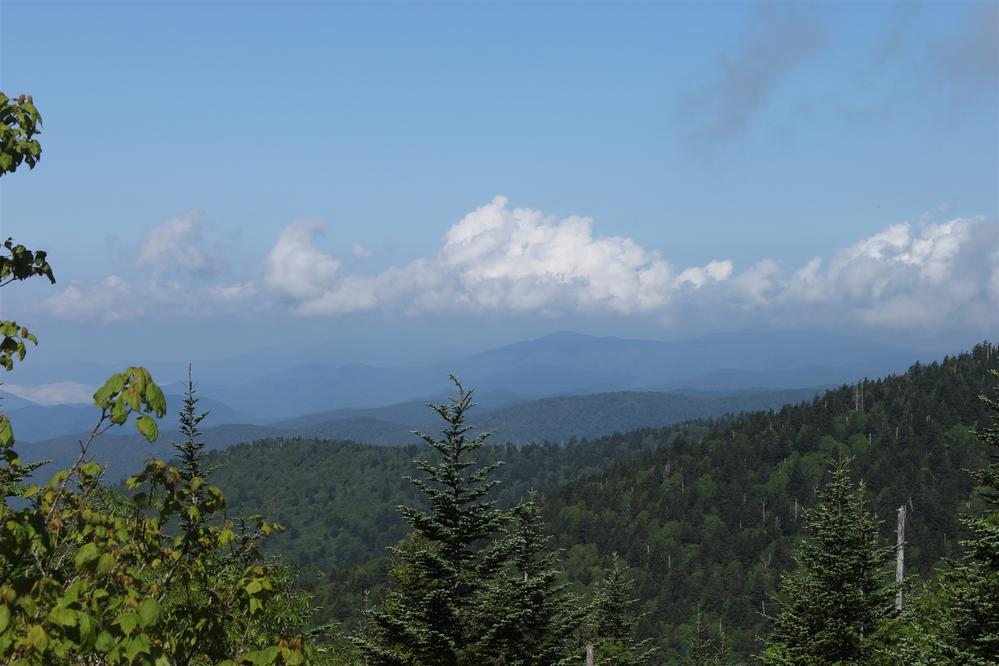 view of Clingmans Dome