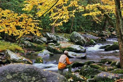 Camps ground great smoky mountain fish info fly fish for Smoky mountain fly fishing