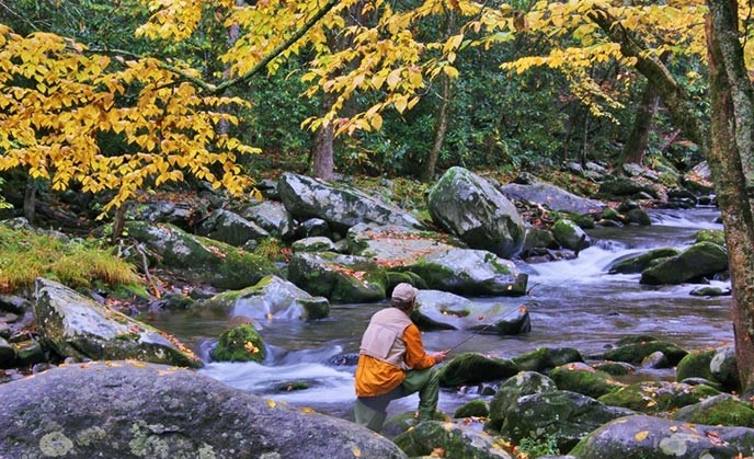 Fishing - Great Smoky Mountains National Park (U S  National