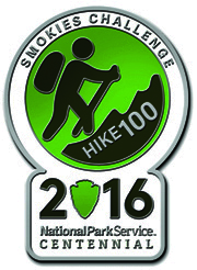 Hike 100 Pin