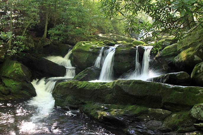 Water cascades over moss-covered boulders in a forest