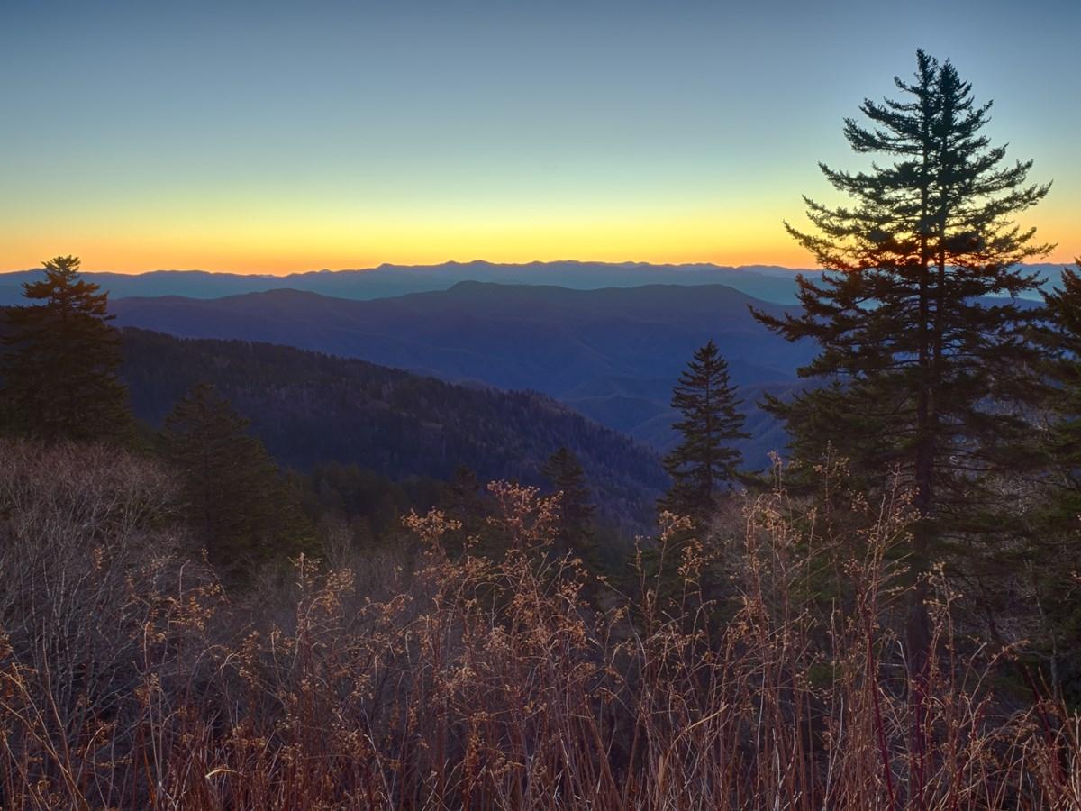 Twilight on Clingmans Dome Road