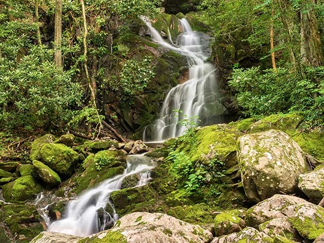 A waterfall tumbles over moss-covered rocks in a forest