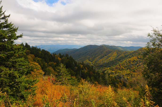 Fall colors and distant mountains as viewed from Newfound Gap.