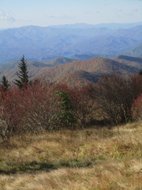 Hike To Andrews Bald Great Smoky Mountains National Park