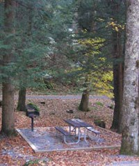 Picnic site at Chimneys Picnic Area.