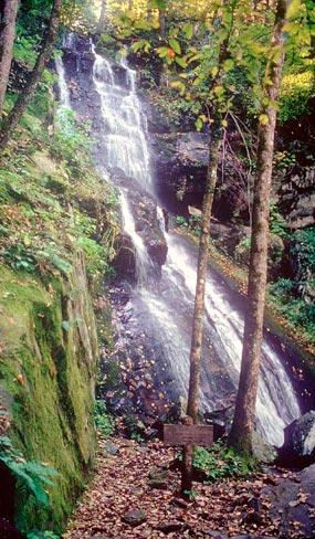 Hen Wallow Falls Great Smoky Mountains National Park U
