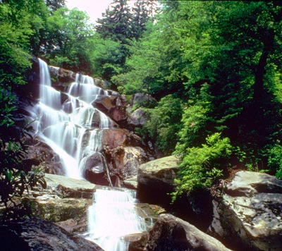 Ramsey Cascades - Great Smoky Mountains National Park (U.S. National Park Service)