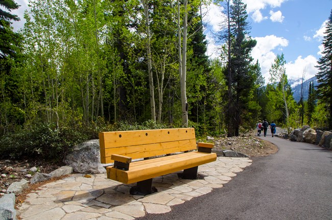 New Bench and Pathway to Jenny Lake