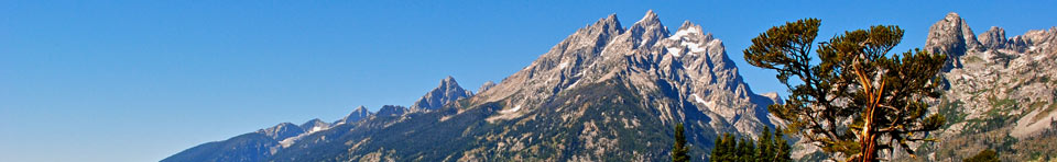 The Cathedral Group from the Teton Park Road