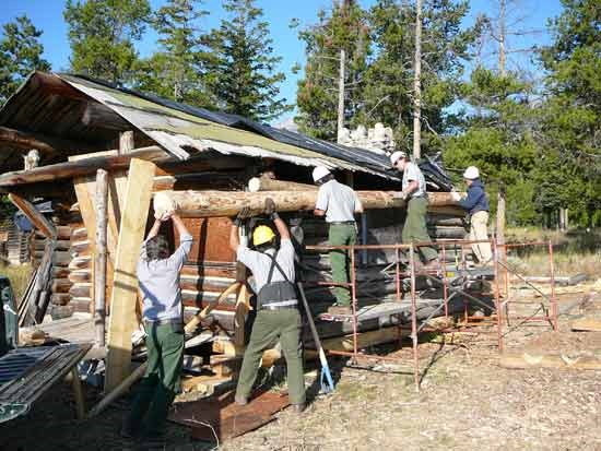 preservation carpenters lifting a new log into place on a historic White Grass Ranch cabin.