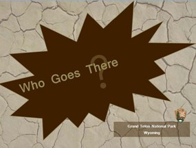 """Who Goes There"" written on brown intro slide to presentation."