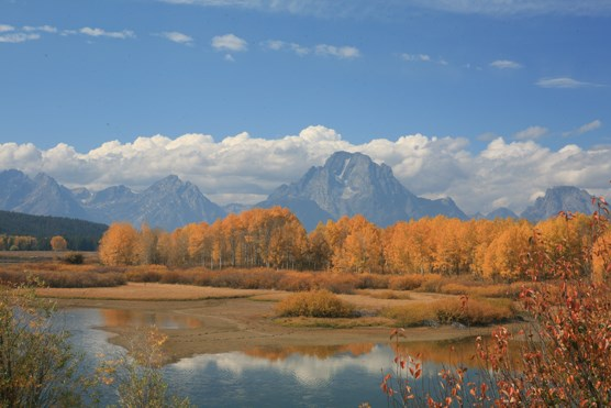 Oxbow Bend Fall Sunrise
