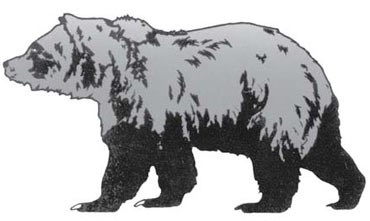 grizzly_comparison