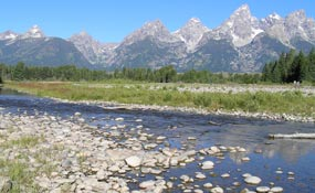 Schwabachers Landing is one of many access areas to view the Snake River flood plain.