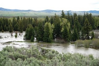 high water on Snake River