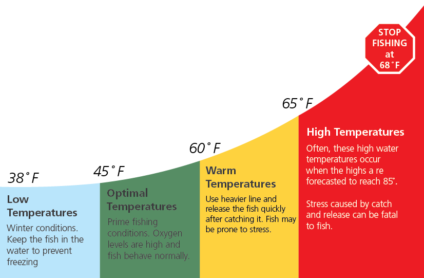 Graphic showing the different fishing conditions at various water temperatures. Stop fishing at 68 degrees F