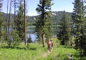 Colter Bay District Trails Grand Teton National Park U