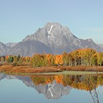 Mount Moran and autumn colors reflected in the Oxbow of the Snake River