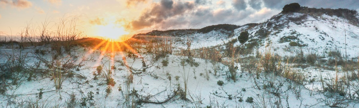 The sun bursts over a white sand dune with scattered vegetation.