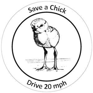 A black and white drawing of a shorebird chick surrounded by the words save a chick, drive 20 mph around it.