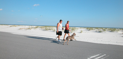 A man and woman walk their dog on a bright sunny afternoon on the Fort Pickens Road next to the white sand dunes.