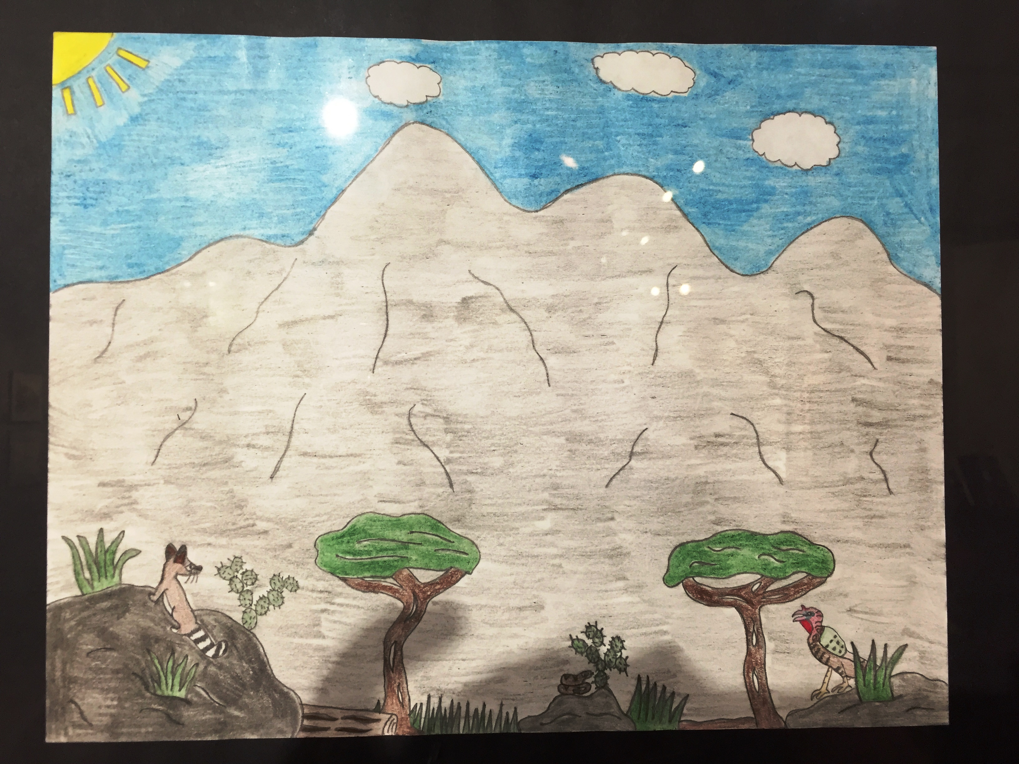 Youth drawing of Guadalupe Mountains, ringtail, snake and turkey