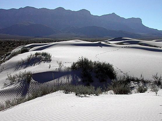 Salt Basin Dunes Guadalupe Mountains National Park U S National Park Service