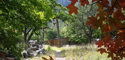 A favorite hike for many visitors is through McKittrick Canyon to the Hunter Line Cabin.