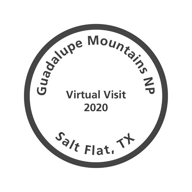 a stamp cancellation for a 2020 virtual visit